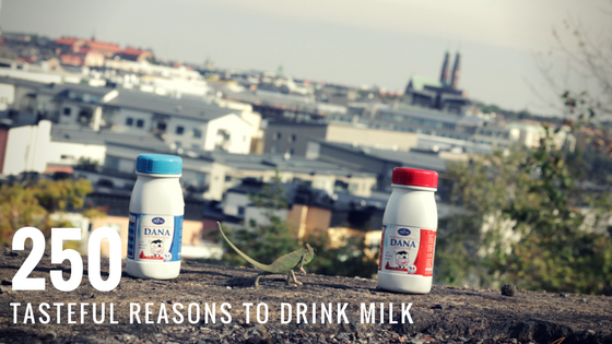 250ml Tasteful Reasons To Drink Milk Dana UHT in Plastic Bottles