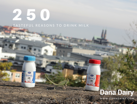 250 Tasteful Reasons To Drink Milk – UHT Plastic Bottles