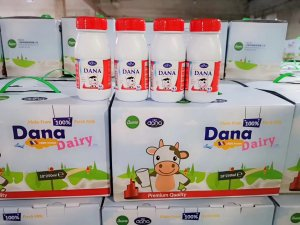 DANA milk PET bottle 10 pack