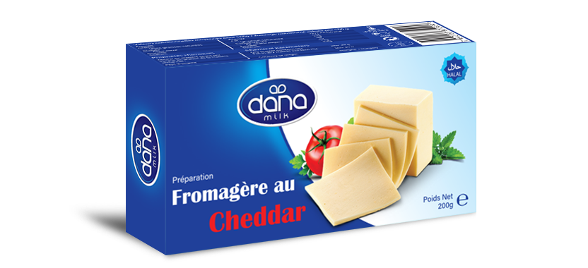 DANA Processed Cheddar Block Cheese 200gr
