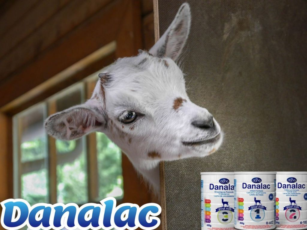 DANALAC Advance Baby Formula With Goat Milk