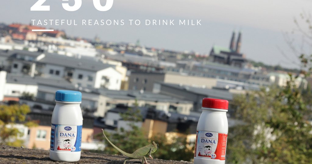 Dana Dairy's 250 ml UHT milk in plastic bottles great personal sizes and wonderfull to drink milk