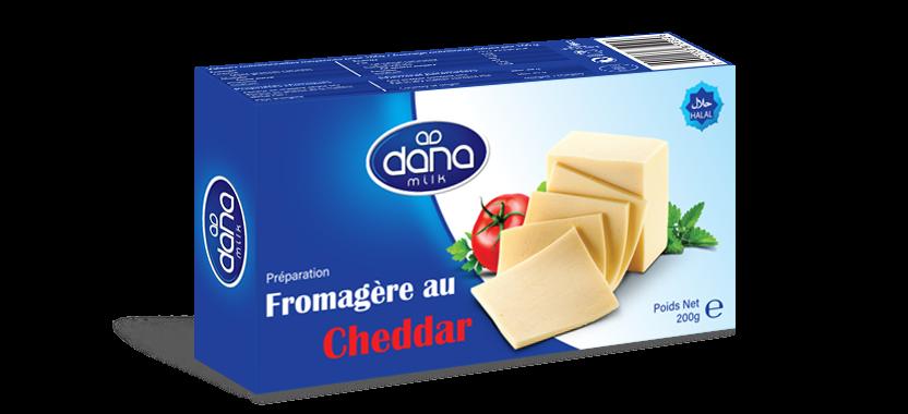 DANA Processed Cheddar Block Cheese 200gr